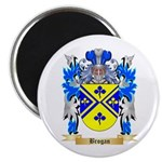 Brogan Magnet
