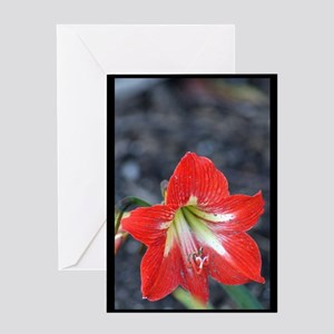 Flower at the Park Greeting Card