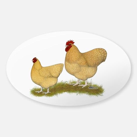 Orpington Lemon Cuckoo Chickens Decal