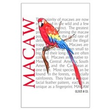 Macaw Posters
