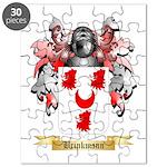 Brinkmann Puzzle