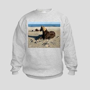 Rock and Stroll Rocky Mountain Stallion Sweatshirt