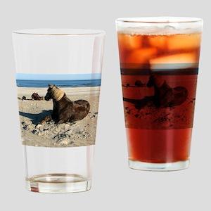 Rock and Stroll Rocky Mountain Stallion Drinking G