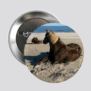 "Rock and Stroll Rocky Mountain Stallion 2.25"" Butt"