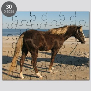 Rocky and Stroll Beach Puzzle