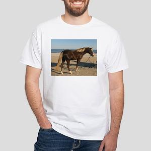 Rocky and Stroll Beach T-Shirt
