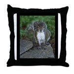 Just Plain Nuts - Digital Photography Throw Pillow