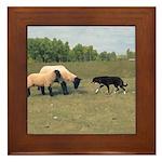 Dog Meets Sheep Framed Tile