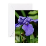 Purple Iris in New Orleans Greeting Card
