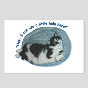 Cat Humor Postcards (Package of 8)