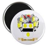 Brindsley Magnet