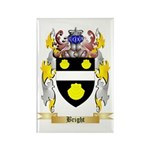 Bright Rectangle Magnet (100 pack)