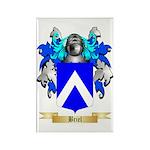 Briel Rectangle Magnet (100 pack)