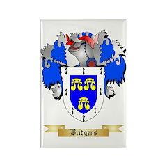 Bridgens Rectangle Magnet (100 pack)