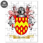 Brettle Puzzle