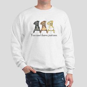Just One Lab Sweatshirt