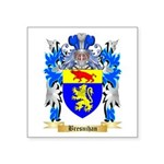 Bresnihan Square Sticker 3