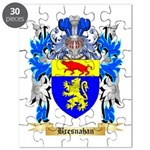 Bresnahan Puzzle