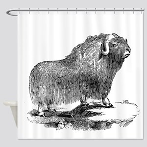 Vintage Musk Ox Shower Curtain