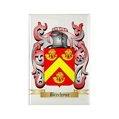 Brechyne Rectangle Magnet (100 pack)