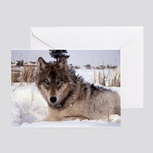 Wolf in Yellowstone Greeting Card