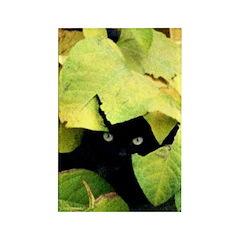Black Cat Camouflage Refrigerator Magnet