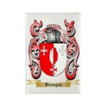 Brangan Rectangle Magnet (100 pack)