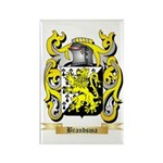 Brandsma Rectangle Magnet (10 pack)