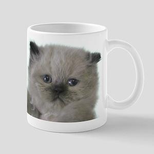 fabulous himalayan kitten Mug