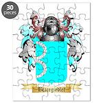 Bracegirdler Puzzle
