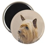 Silky Terrier 2.25