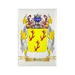 Boyle (Scottish) Rectangle Magnet (100 pack)