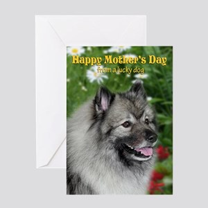 Keeshond Mother's Day Card