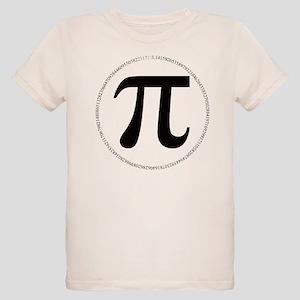 pi Ash Grey T-Shirt
