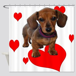 Love Dachshunds Shower Curtain