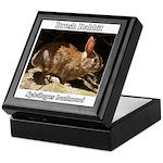 Brush Rabbit Keepsake Box