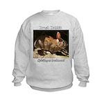 Brush Rabbit Sweatshirt
