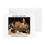 Brush Rabbit Greeting Cards (Pk of 20)