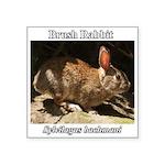 Brush Rabbit Sticker