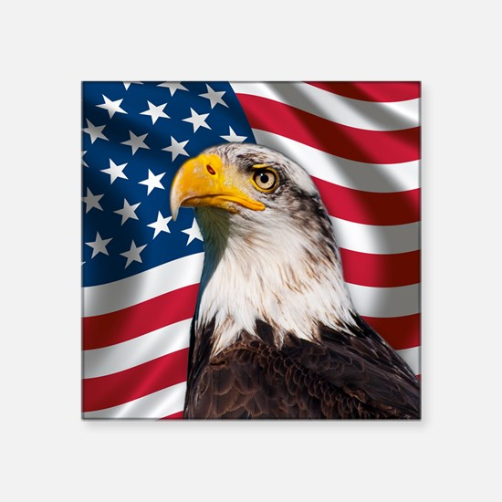 USA flag with bald eagle Sticker