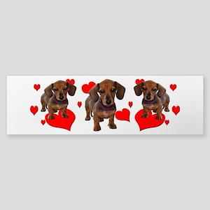 Dachshund Dachsie Puppies Sticker (Bumper)