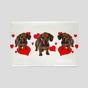 Dachshund Dachsie Puppies Rectangle Magnet