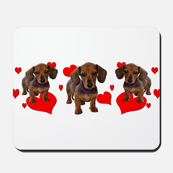 Dachshund Dachsie Puppies Mousepad