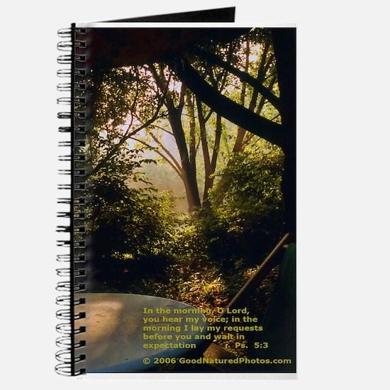 GoodNaturePhoto journal - morning sunlight