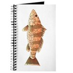 Spotted Bay Bass fish Journal
