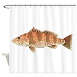 Spotted Bay Bass fish Shower Curtain
