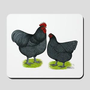 Blue Orpington Chickens Mousepad