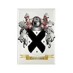 Carstensen Rectangle Magnet (10 pack)