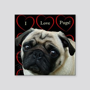 Cute I Love Pugs Sticker