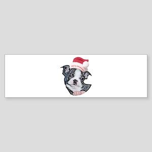 Boston Terrier Puppy Bumper Sticker